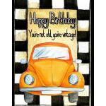 预订 Happy Birthday You're Not Old You're Vintage: Notebook J