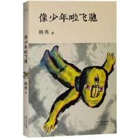 像少年啦飞驰 韩寒文集文艺版,全新修订升级,讲述了一群年轻人的成长过程,青春文学叛逆成长书籍