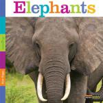 预订 Seedlings: Elephants [ISBN:9780898127829]