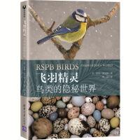飞羽精灵:鸟类的隐秘世界