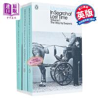 追忆逝/似水年华套装 英文原版 In Search of Lost Time 马塞尔・普鲁斯特 Marcel Proust 意识流小说