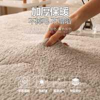 羊羔绒床垫软垫加厚保暖垫铺底海绵家用宿舍单人学生冬天垫被褥子