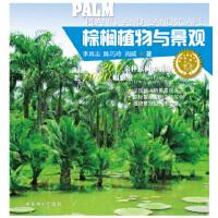 棕榈植物与景观