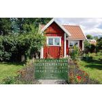预订 Bellezza Per Tutti: Giardini E Orti Urbani in Svezia [IS