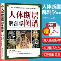 医学书正版 人体断层解剖学图谱 全彩色 刘树伟 主编 山东科学技术出版社