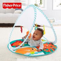 费雪新生婴儿玩具0-1岁时尚轻便折叠健身器FXC15宝宝早教儿童益智