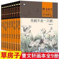 曹文轩画本 草房子套装 9册 秃鹤不是一只鹤 浸月寺的风铃 月光下红菱船 奶奶的艾地 沉没的大红门 大屋梦里的羊 再见