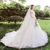 婚纱2018新款超仙礼服梦幻公主新娘拖尾苏州婚纱一条街轻森系显瘦1210 +配送模特同款头纱