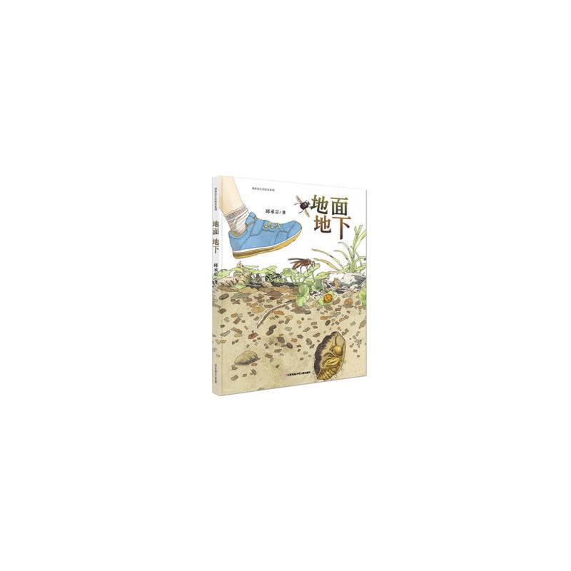 首届丰子恺优秀儿童图画书奖:池上池下+地面地下(清华附小推荐 科普绘本 大自然是最好的老师 全2册)