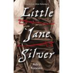 预订 Little Jane Silver: A Little Jane Silver Adventure [ISBN