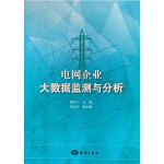 电网企业大数据监测与分析