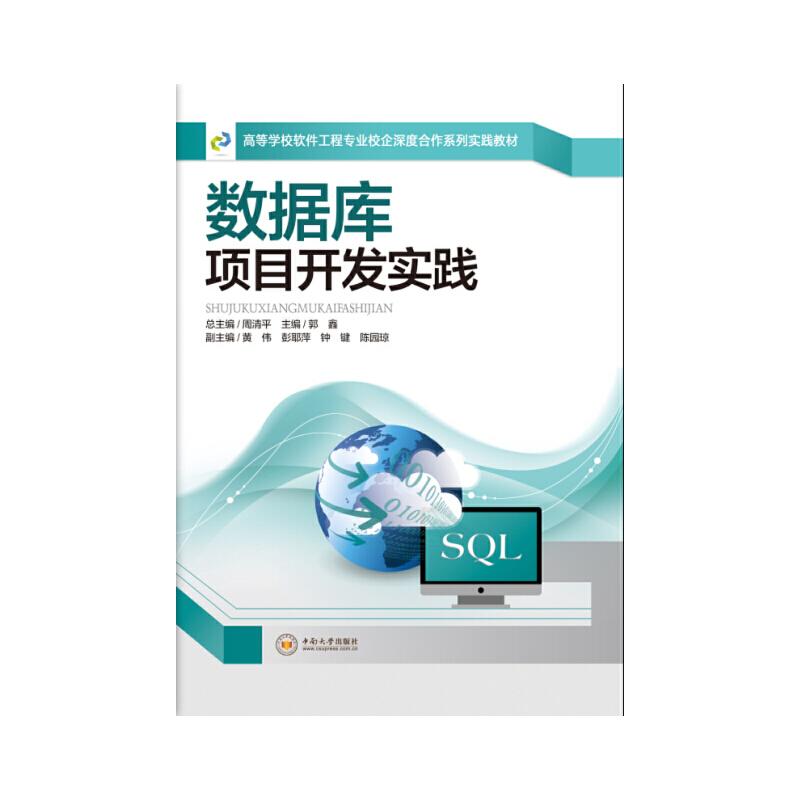 数据库项目开发实践 PDF下载